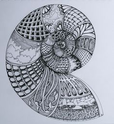 spiral shell by Deborah @ flickr - I love this! I'd fill it with different things, but I like the black and white and different patterns