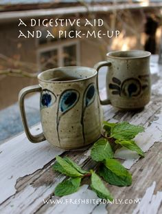 This flavorful peppermint tea will pick you up and even aid digestion...If you are into mint tea, consider collecting and growing an assortment of mints in pots by your kitchen door. There are lemon and orange mints, chocolate mints, lime and ginger mints and many others.
