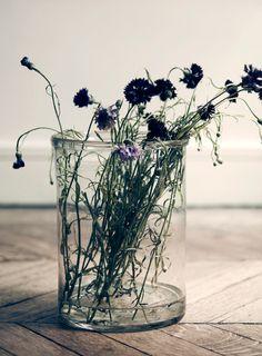 Flowers by the Stylist Hans Blomquist // Цветя от стилиста Ханс Бломкуист   79 Ideas