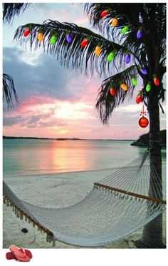 Palm Trees, Christmas Lights and Warm Breezes, someday I want to spend Christmas on a warm white sandy beach!