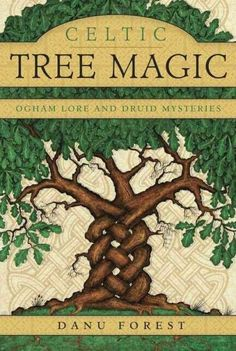 Explore the powerful magic of the twenty-five trees in the ogham tradition. Enrich your spiritual practice with authentic Celtic wisdom and practical techniques. Written by a Druid witch and Celtic sh