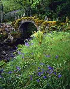okay clearly I need to go back to Scotland and just spend a couple weeks traipsing through the Isle of Skye (Fairy Bridge, Fasnacloich, Scotland)