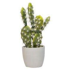 "Artificial Cacti Arrangement in Cement Pot Green 17"" - Lloyd & Hannah"