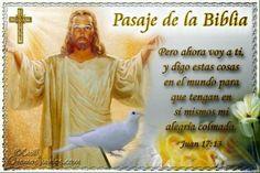 Vidas Santas: Santo Evangelio según san Juan 17:13
