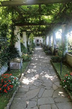 Anacapri. Jardins da Vila San Michele. Ilha de Capri, Itália.  Fotografia:Miguel Hermoso Cuesta.