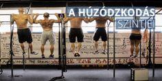 A húzódzkodás szintjei - Musclebody. Wrestling, Neon, Sports, Lucha Libre, Hs Sports, Neon Colors, Sport, Neon Tetra