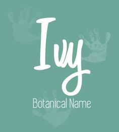 Ivy - Predicting the Most Popular Girl Baby Names for 2017 - Photos Cute Baby Names, Baby Girl Names, Cute Babies, Baby Kids, Baby Names And Meanings, Names With Meaning, Paper Cutting Patterns, Name Inspiration, Female Names
