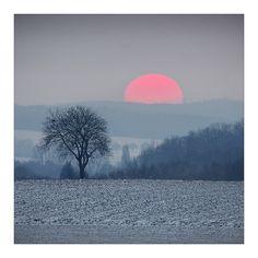 Zen Mood by Sylvain Sester