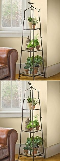 Branch Plant Stand Brings the Outdoors In - 101 Gardening