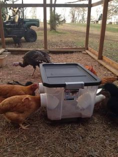 What a brilliant feed bin idea!!! No scrapping around and wasted feed on the floor and the feed would be kept dry in the rain (Ps not my photo)