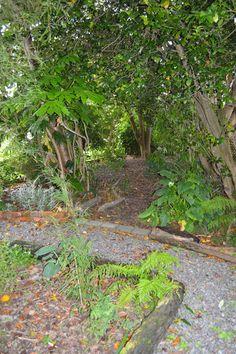 The garden at Studio 202 Levin NZ. Garden, studio and gallery of artist Ronda Turk. Studio 202, Garden Studio, Small Towns, Stepping Stones, Gallery, Outdoor Decor, Artist, Plants, Home Decor