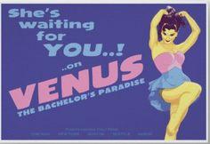 Venus_Is_Waiting_Poster