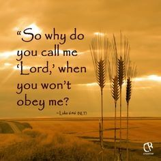 "Luke 6:46 NKJV  ""But why do you call Me 'Lord, Lord,' and not do the things which I say?"