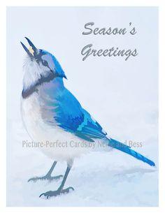Set of 8 Holiday Cards Blue Jay Seasons Greetings Bird Christmas Snow Scene Original Photo