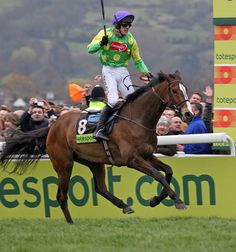 Ruby Walsh and Kauto Star. Horse Racing Uk, Horse Racing Books, Drawing Animals, Animal Drawings, Horse Fly, Sport Of Kings, Thoroughbred Horse, Gold Cup, Racehorse
