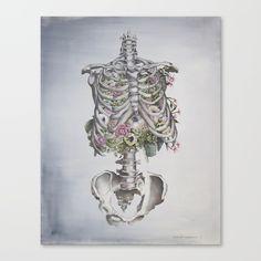 Floral Anatomy Skeleton - $85.99
