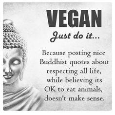 #truthbomb buddhism veganism buddhist vegan
