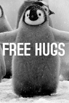 Free Hugs - www.funny-pictures-blog.com