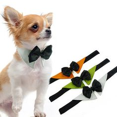 Dog Bow Tie Collar Wedding Tuxedo Fancy Dress