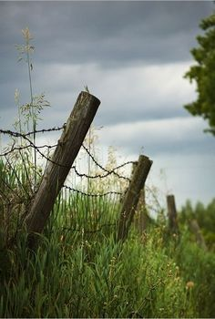 3 Playful Cool Ideas: Garden Fencing Ideas To Keep Deer Out Unique Backyard Fence Ideas.Fence Ideas Backyard Wooden Fence Around House.Wooden X Fence. Fence Landscaping, Backyard Fences, Garden Fencing, Country Fences, Country Farm, Country Life, Country Roads, Front Yard Fence, Dog Fence