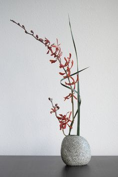 My final attempt at this ikebana. The Yucca sliced leaves fit the Orchid and the container best I think. I twisted the upright one slightly, so it has a light twirl. Then I pierced the bowing one through it, after twisting that one around the Orchid.