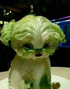 Lettuce Puppy Will Make You Swear Off Vegetables - Food Carving Ideas Veggie Art, Fruit And Vegetable Carving, Veggie Food, Vegetable Tray Display, Cute Food, Good Food, Awesome Food, Creative Food Art, Food Sculpture