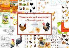 """Непоседы: Тематический комплект """"Птичий двор"""""""