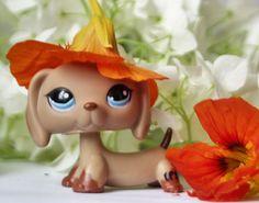 JAMNIK Littlest Pet Shop