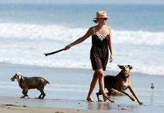 Famosos: Charlize Theron con sus perros