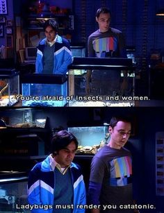 Sheldon to Raj: You're afraid of women and insects. Ladybugs must render you catatonic. (Hahaha!!!)