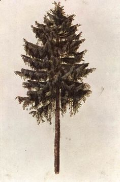 // Albrecht Dürer IN THE PINES