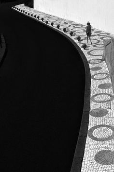 Which Will by Paulo Abrantes