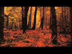 Canada Reads 2014: The Orenda by Joseph Boyden Book Trailer - YouTube