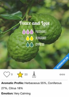 Patchouli bergamot cypress
