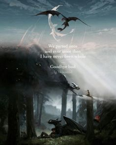 Parted and never the same. Got Dragons, Httyd Dragons, Httyd 3, Hiccup, Cute Toothless, Toothless Dragon, Dragon 2, Tragedy Quotes, Fictional Heroes
