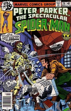 The Spectacular Spider-Man #28 - Ashes to Ashes
