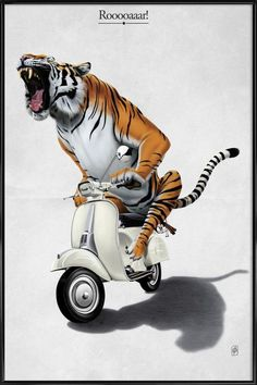 Tiger on Vespa by Rob Snow. 111 artists and illustrators from around the world have come together to form the Creative Pet Project. Moto Scooter, Vespa Ape, Scooter Girl, Vespa Scooters, Scooter Garage, Piaggio Vespa, Art Mural, Wall Art, Stickers