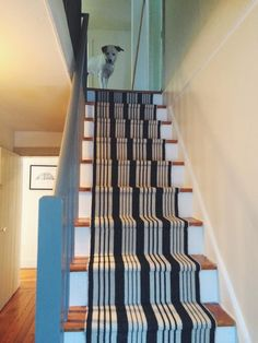 Our DIY Stair Makeover: Paint + Runner from featuring Birmingham Black Woven Cotton Rug: Narrow Staircase, Staircase Design, Paint Runner, Traditional Staircase, Staircase Makeover, Painted Stairs, Big Design, Reno, Diy Stair