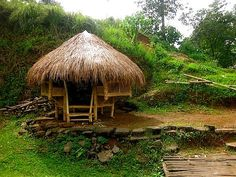 and the story of Leo: Read the story and see 16 photos of a visit to Cagayan de Oro, Philippines by TravelPod member saharandreams Playhouse Furniture, Bamboo House Design, Bahay Kubo, Bamboo Architecture, Cabana, Bamboo Tree, Natural Homes, Earth Homes, Forest House