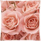 Hot New Arrival Gorgeous Vintage Pale Pink Rose Shabby Chic Floral Botanical Pastel Rose Garden Art Pillow Cases  18 x 18 * Click image for more details. (Note:Amazon affiliate link) #HomeGadgets