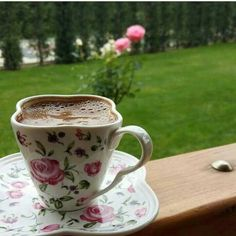 ...5/24/2017...up early having coffee