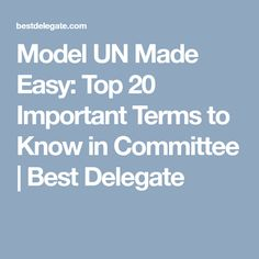 Model UN Made Easy: Top 20 Important Terms to Know in Committee | Best Delegate