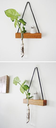 These modern hanging wall shelves made from reclaimed wood have a ledge to display a little trinket and a bud vase for a flower. Decorative Wall Shelves, Small Wall Shelf, Wall Shelf Decor, Wood Wall Shelf, Small Shelves, Plant Shelves, Diy Wall Decor, Unique Wall Shelves, Room Decor