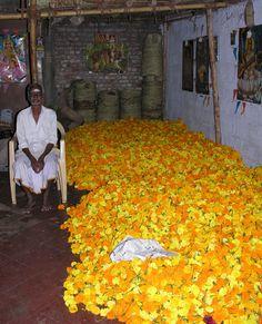 Marigold seller, Kerala, India