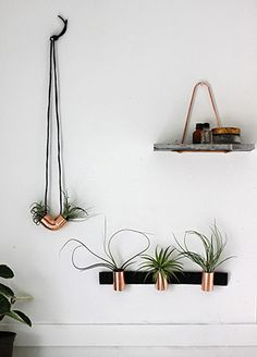 Hangende planten met een koperen accent