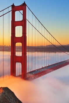 The 21 best things to do in San Francisco! Keep this list in mind when planning your next vacation
