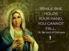 Catholic Connect on | My Faith | Catholic, Holy mary, Blessed