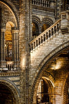 Natural History Museum, London...never enough time to spend there...a totally amazing place!