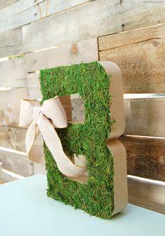 DIY Moss Cardboard Letter