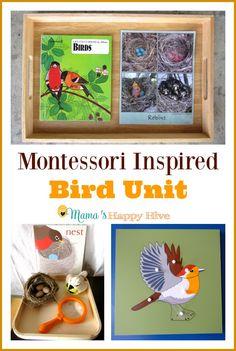 Montessori Inspired...